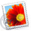 Windows-Live-Mail icon