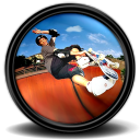 Tony Hawk s ProSkater 4 4 icon