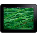 iPad Landscape Grass Background icon