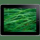 iPad Landscape Grass Background icon
