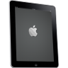 IPad-Side-Apple-Logo icon
