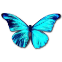 Rhetenor Morpho icon