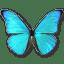 Morpho-Rhetenor-Cacica icon