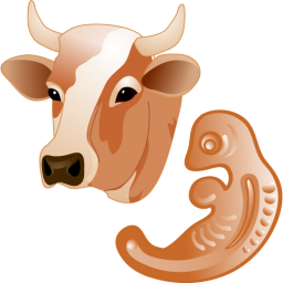 Cow embryo icon