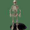 Standing-skeleton icon
