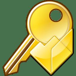 Open key icon