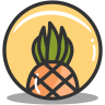 Button-pineapple icon