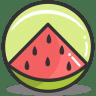 Button-watermelon icon