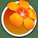 Adobe Illustrator Old icon