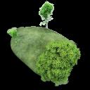 Island Stone icon