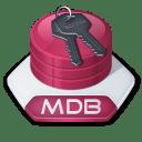 Office access mdb icon