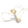 Key-necklace icon