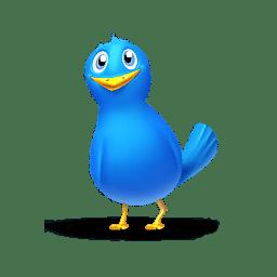 Single bird icon