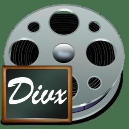 Fichiers divx icon