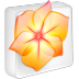 Illustrator-CS-2 icon