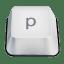Letter p icon