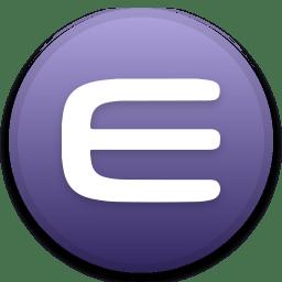 Enjin Coin icon