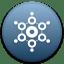 BridgeCoin icon