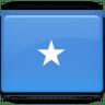 Somalia-Flag icon