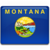 Montana-Flag icon
