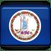 Virginia-Flag icon