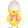 Chicken-egg-shell-top icon