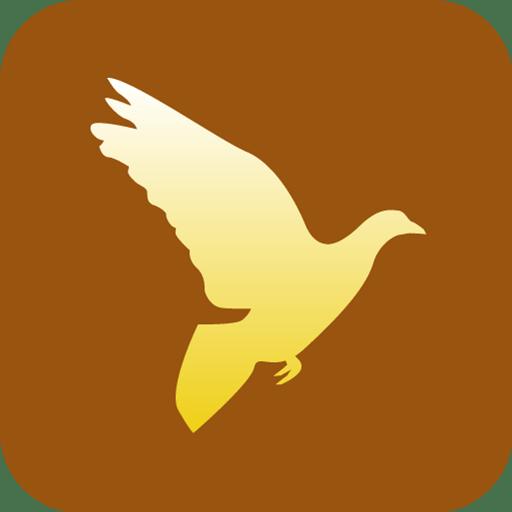 Christianity-Peace-Dove icon