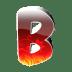 B1 icon