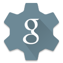 Settings Google icon