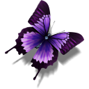 Other Butterfly icon