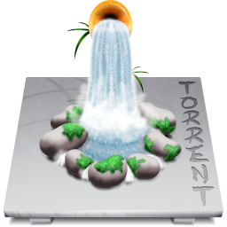 Software Torrent icon