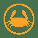 Crustacens allergy amber icon