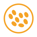 Sesame allergy amber icon
