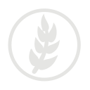 Wheat allergy grey icon