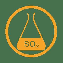 Sulphurdioxide allergy amber icon