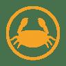 Crustacens-allergy-amber icon