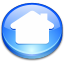 Action button home icon