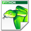 Mimetype-source-py-snake icon