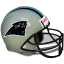 Panthers icon