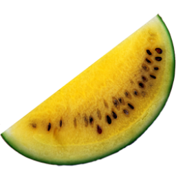 Yellow watermelon icon