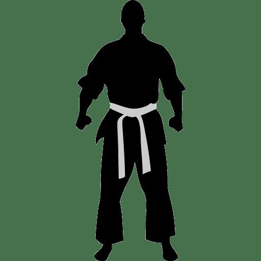 Karate ready icon