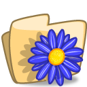 Folder Flower Blue icon