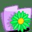 Folder Flower Green icon