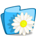 Folder-Flower-Camomile icon