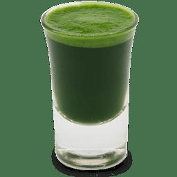Wheatgrass juice shot icon