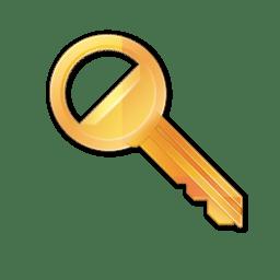 Key Icon Radium Iconset Sean Poon