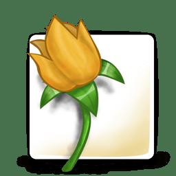 Software adobe illustrator icon