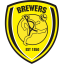 Burton-Albion icon