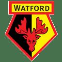 Watford FC icon