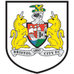 Bristol City icon